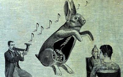 Il ne faut pas tuer le lapin